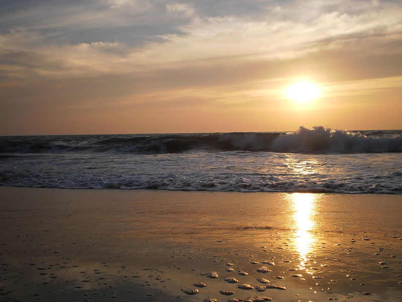 Best Beaches in Kerala - Cherai Beach