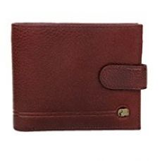 Buy K London Elephantine Multiple Zipper Wallet-14495_brn from Amazon
