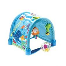 Fisher-Price Ocean Wonders Kick and Crawl Gym for Rs. 2,599
