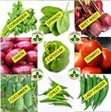 Buy Only For Organic Combo Of Nine Kitchen Garden Hybrid Seeds from Amazon