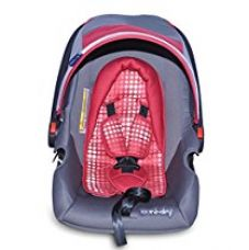 Buy Sunbaby Car Seat (Gray/Red) from Amazon