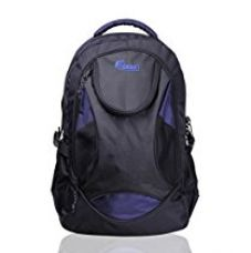 Buy F Gear Sniper Lite V2 Polyester 33 Ltrs Blue Laptop Backpack (2179) from Amazon