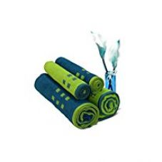 Spaces Atrium 4 Piece 450 GSM Cotton Towel Set - Lime Green and Teal for Rs. 1,315