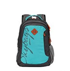 Buy Skybags Leo 26 Ltrs Blue Casual Backpack (BPLEO1BLU) from Amazon