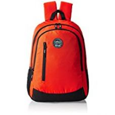 Buy GEAR Orange and Black Casual Backpack (BKPECOBP40601) from Amazon