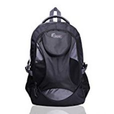 Buy F Gear Sniper Lite V2 Polyester 33 Ltrs Grey Laptop Backpack (2177) from Amazon