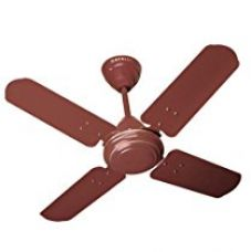 Buy Havells Speedster 600mm Ceiling Fan (Brown) from Amazon