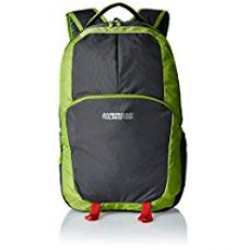 Buy American Tourister 24 Lts Green and Grey Laptop Backpack (70W (0) 04 008) from Amazon