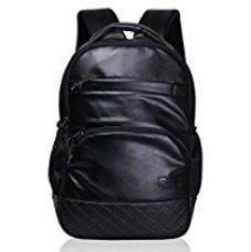 Buy F Gear LuXur 28 Ltrs Black Laptop Backpack (2403) from Amazon