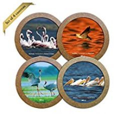 Buy Hot Muggs Wild Focus Beautiful Birds Wooden Coaster, 4 Pieces from Amazon