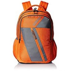 Buy American Tourister 21 Ltrs Orange Casual Backpack (Ebony Backpack 07) from Amazon