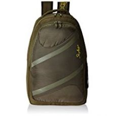 Skybags Router 26 Ltrs Green Casual Backpack (LPBPROU2GRN) for Rs. 891