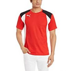 Buy Puma Men's Round Neck Synthetic T-Shirt from Amazon