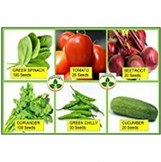 Only For Organic Combo Of Six Kitchen Garden Hybrid Seeds for Rs. 199