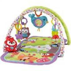 Buy Fisher-Price 3-in-1 Musical Activity Gym, Multi Color from Amazon