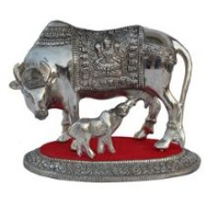 ECraftIndia White Metal Decorative Cow with Calf statue (LxWxH - 9INx6INx7IN) for Rs. 1,336