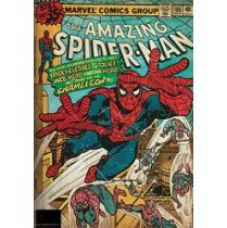 Marvel 'The Amazing Spider - Man' Officially Licensed Poster (30.48 cm x 45.72 cm) for Rs. 225
