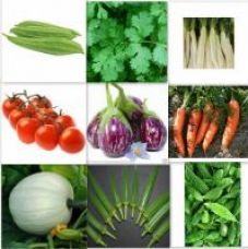 Buy Seeds-Combo Pack Of 20 Hybrid Vegetable For Terrace And Kitchen Gardening from ShopClues