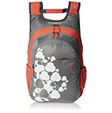 Skybags Blitz 26.5 Ltrs Grey Casual Backpack (BPBLIFS1GRY) for Rs. 1,878