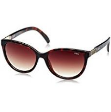 Buy IDEE Gradient Cat Eye Women's Sunglasses - (IDS2118C2SG|57|Brown Gradient lens) from Amazon
