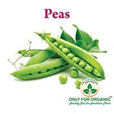 Buy Only for Organic ! Hybrid Green Peas Seeds : 30 Seeds ! from Amazon