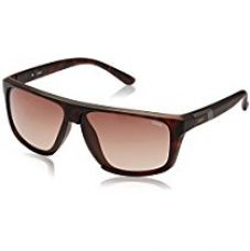 Buy IDEE Gradient Square Men's Sunglasses - (IDS2177C2SG|61|Brown Gradient Color) from Amazon