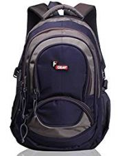 Buy F Gear Storm Blue Grey 25 Litres Laptop Backpack from Amazon