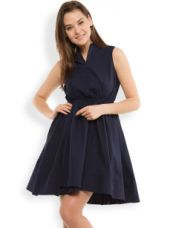 Women Navy Solid Fit & Flare Dress