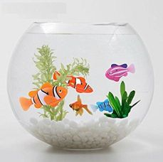 ROBO FISH Electric toy Water Activated Swimming electronic fish robotic toy, Multicolor for Rs. 349