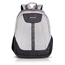 Buy Kooltopp Loretto Laptop Backpack for all 15.6 inch Laptops & 15.4 Apple Macbook (Silver/Grey) from Amazon