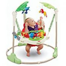 Fisher-Price Rainforest Jumperoo for Rs. 15,222