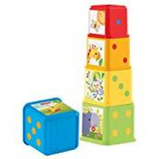 Buy Fisher Price Stack and Explore Blocks, Multi Color from Amazon