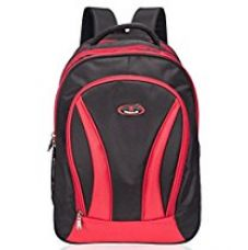 Buy Cosmus Galileo Polyester39 Litres Red School Bag from Amazon