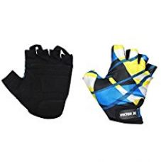 Buy Vector X Vx-300 Gym Fitness/Bike Gloves,  (Blue/Black/Yellow) from Amazon