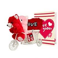 Buy Tied Ribbons Combo (2 Teddy, Love Tri Cycle , Heart Cushion , Greeting Card) from Amazon