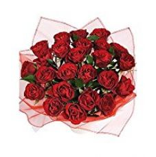 Buy Indian Gift Emporium Cute Exotic Fresh Red Roses (Bunch of 24) from Amazon