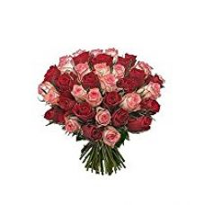 Indian Gift Emporium Special Hand Bunch of Red n Red Roses (Bunch of 24) for Rs. 879