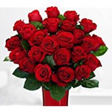 Buy TIED RIBBONS Best gift for your loved ones Bunch Of 24 Red Roses with Greeting Card from Amazon