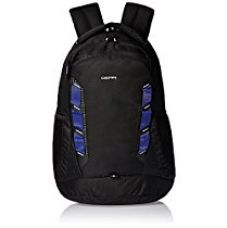 Buy Gear Business 30 ltrs Black and Royal Blue Laptop Backpack (LBPTLBLZR0110) from Amazon
