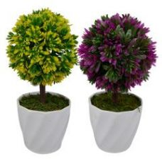 Buy Green Plant Indoor Artificial Bonsai Tree (set Of 2 ) from Rediff