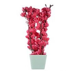 Buy JaipurCrafts Premium Forever Collection Artificial Flowers with Pot from Amazon