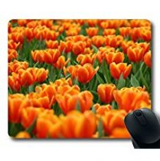 Buy Mouse Pad Custom Large Mouse pad Rubber Mousepad in 9.45*7.87 Inches By AART from Amazon