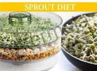 Buy Sprout Maker Medium for Rs. 225