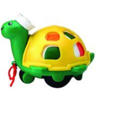 Buy Funskool Twirlly Whirlly Turtle from Amazon