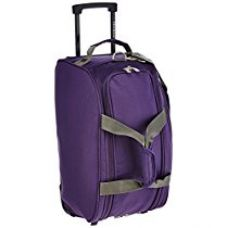 Buy Aristocrat Volt Polyester 53 cms Purple Travel Duffle (DFTVOL55PPL) from Amazon