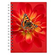Designer Spiral Notebook (500 Pages) By AART for Rs. 349