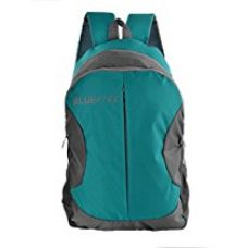 Buy The Blue Pink Leonardo Polyester 18 Liters Turquoise And Grey Laptop Backpack (Leo-1701) from Amazon