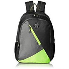 Buy Gear 28 Ltrs Grey and Green Casual Backpack (BKPBLOCKY0403) from Amazon