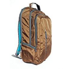 American Tourister Polyester 32 Ltrs Brown Laptop Bag (AMT BUZZ 2016 BACKPACK02-D BRN) for Rs. 1,999