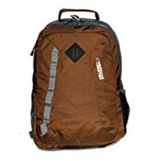 Buy American Tourister Polyester 29 Ltrs Brown Laptop Bag (AMT BUZZ 2016 BACKPACK03-D BRN) from Amazon